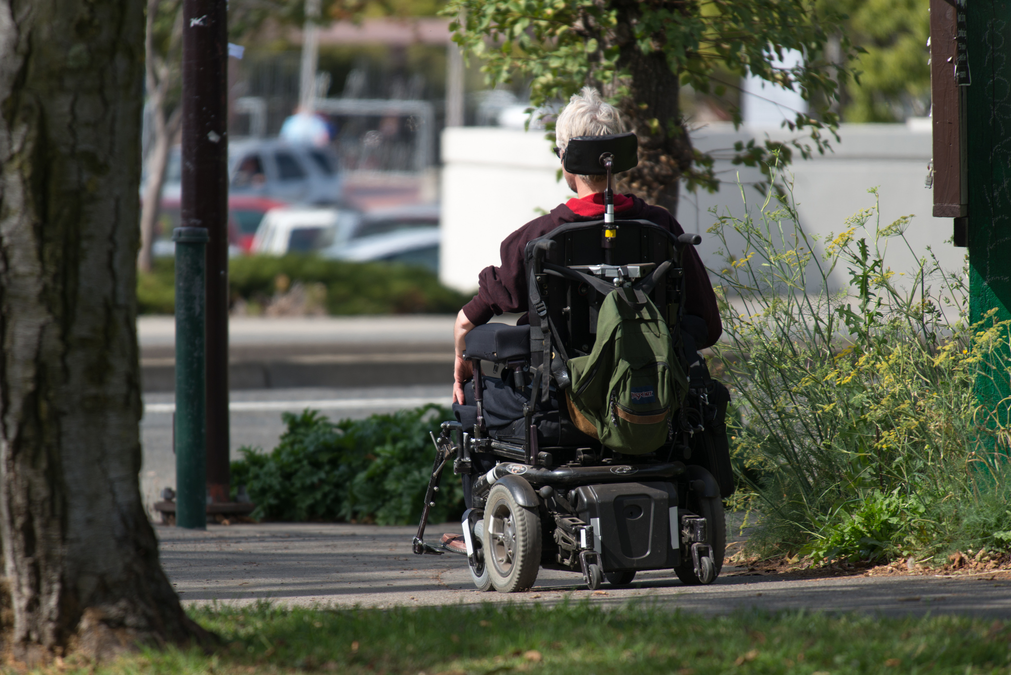 Person using wheelchair (IMAGE: D Coetzee, Flickr)