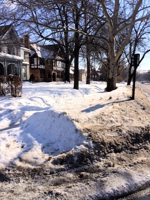 Bus stop at East and Merriman, 3/9/15 [Photo: Renee Stetzer]