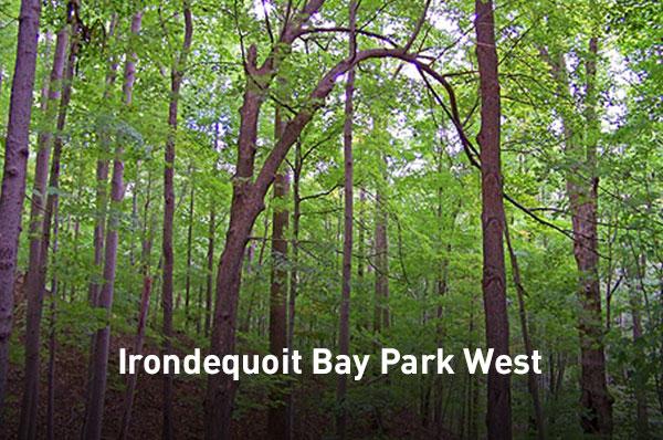 Irondequoit Bay Park West