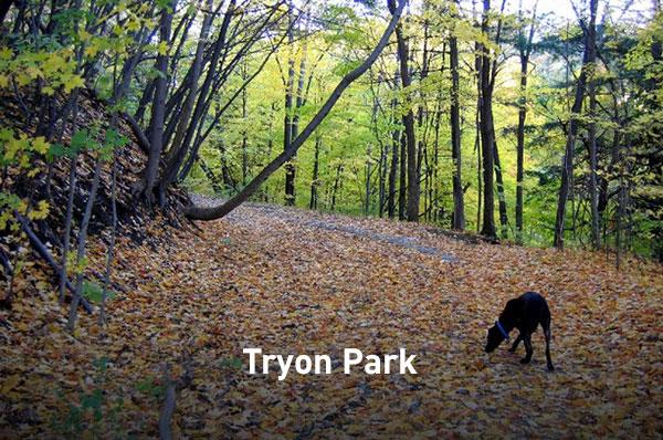 Tryon Park