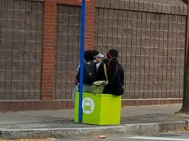 Genesee Street Bus Stop Cube